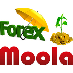 Forex Moola EA is automated Forex robot
