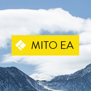 Mito EA is automated Forex robot